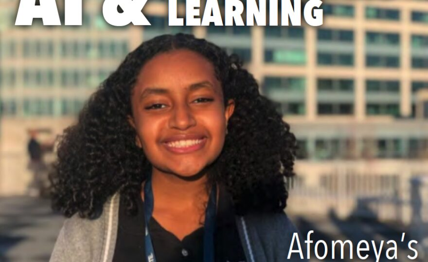 AI and Personalized Learning: Afomeya's Journey